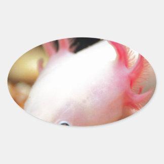 Axolotl Weißling Oval Sticker
