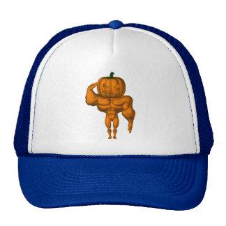 Aye Aye, Sir ! Trucker Hats