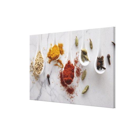 Ayurvedic Warming Spices Canvas Print