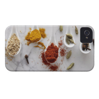 Ayurvedic Warming Spices iPhone 4 Cover