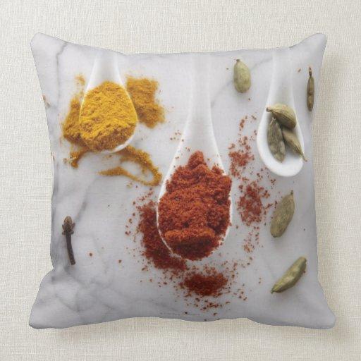 Ayurvedic Warming Spices Pillows