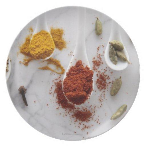 Ayurvedic Warming Spices Plates