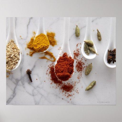 Ayurvedic Warming Spices Print