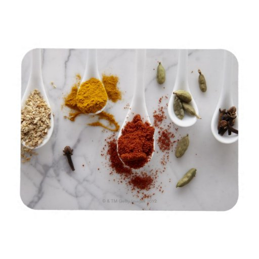 Ayurvedic Warming Spices Rectangular Magnet