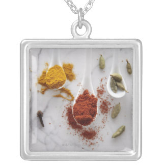 Ayurvedic Warming Spices Silver Plated Necklace