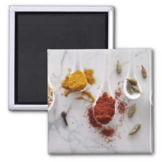 Ayurvedic Warming Spices Square Magnet