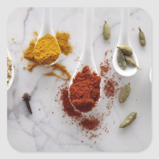 Ayurvedic Warming Spices Square Stickers