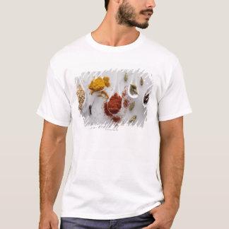 Ayurvedic Warming Spices T-Shirt