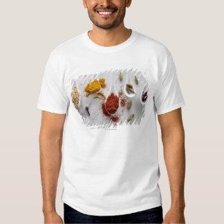 Ayurvedic Warming Spices Tshirt