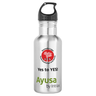 Ayusa YES Water Bottle (18 oz), Stainless Steel