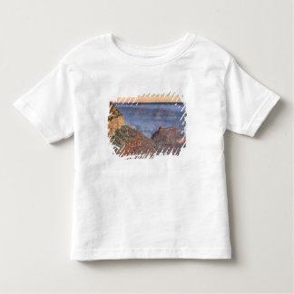 AZ, Arizona, Grand Canyon National Park, South 2 Toddler T-Shirt