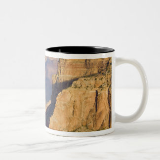 AZ, Arizona, Grand Canyon National Park, South 3 Two-Tone Coffee Mug