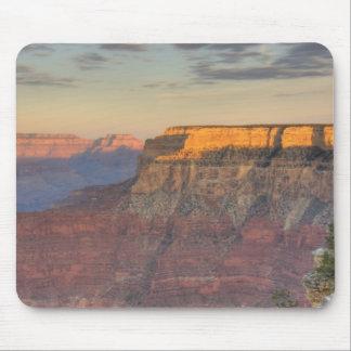 AZ, Arizona, Grand Canyon National Park, South Mouse Mat