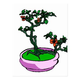 Azalea Bonsai Orange Flowers Bonsai Graphic Postcard