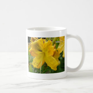 AZALEA FLOWERS 10 Yellow Azaleas Cards Gifts Mugs