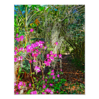 Azalea Path Bok Tower Gardens Lake Wales Florida Poster