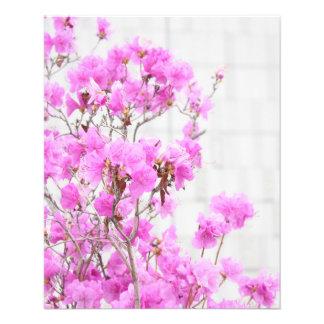 Azalea pink flowers photography beauty soft backgr 11.5 cm x 14 cm flyer