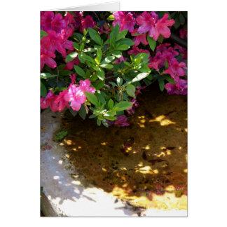 Azaleas and Bird Bath Greeting Card