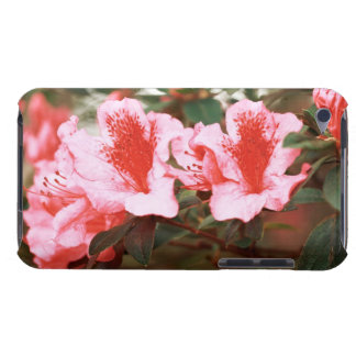 Azaleas Barely There iPod Cover