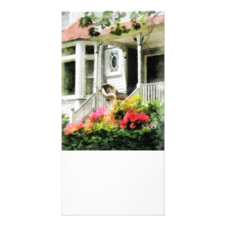 Azaleas by Porch With Wicker Chair Personalised Photo Card