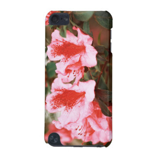 Azaleas iPod Touch (5th Generation) Covers