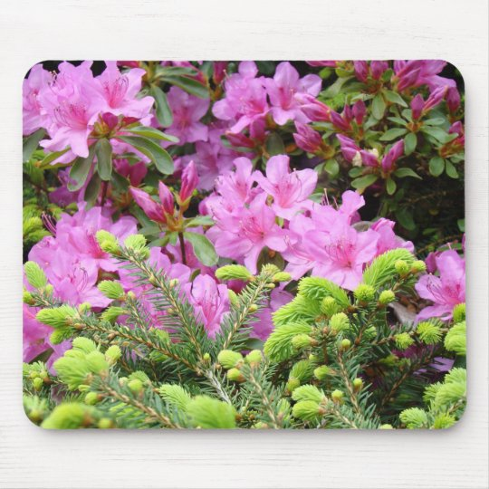 AZALEAS Flowers MOUSE PADS Pine Tree MOUSEPAD