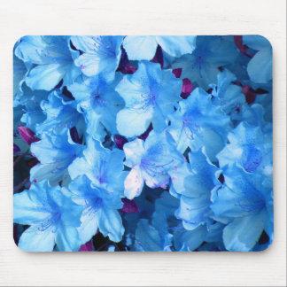 Azaleas in Blue Mouse Mat
