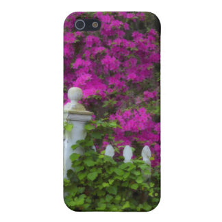 Azaleas in the spring at Historic Isle of Hope iPhone 5/5S Case