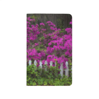 Azaleas in the spring at Historic Isle of Hope Journal