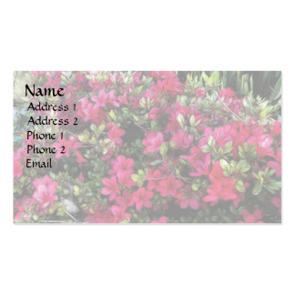 Azaleas in the Sun Business Card Template