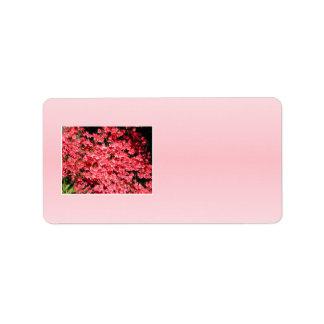 Azaleas. Pretty Pink Flowers. Label