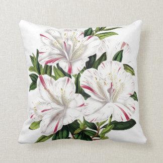 Azaleas vintage illustration throw pillows