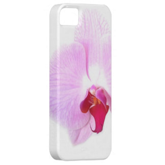 Aziza Orchid Blossoms iPhone 5 Case