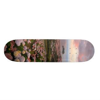 Azorean town at sunset skateboard