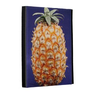 Azores pineapple iPad folio cases