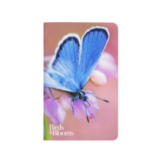 Azure Butterfly Journal