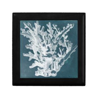 Azure Coral I Gift Box