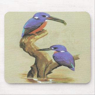 Azure Kingfisher - Ceyx azureus Mouse Mat