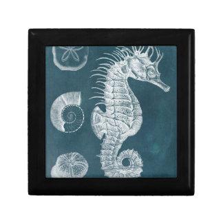 Azure Seahorse Study I Gift Box