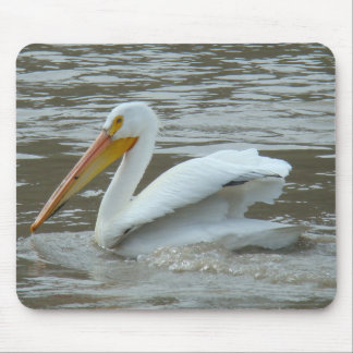 B0014 American White Pelican Mousepads