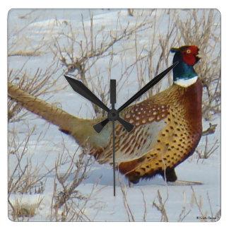 B0022 Ring-necked Pheasant Wall Clocks