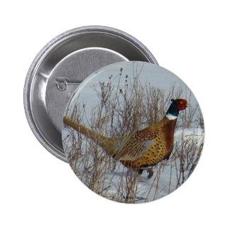 B0023 Ring-necked Pheasant button