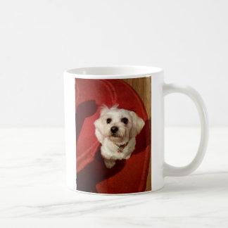 b55test100_70a to category 70aa to a basic white mug