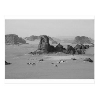 B&W Algeria Desert Postcard