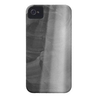 B&W Antelope Canyon iPhone 4 Case-Mate Case