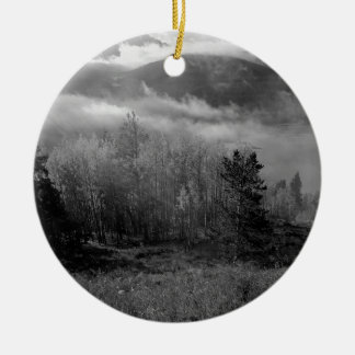 B&W Aspen 3 Christmas Ornament