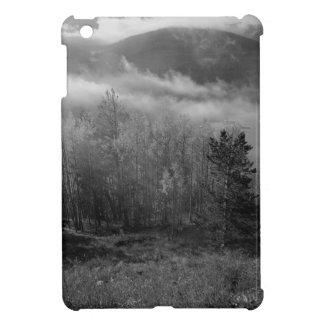 B&W Aspen 3 iPad Mini Cover