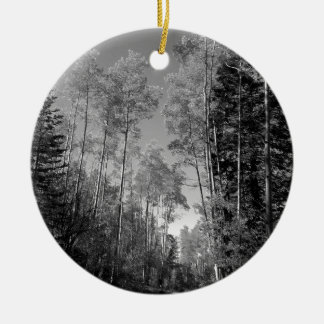 B&W Aspen 4 Christmas Ornament