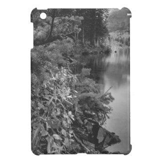 B&W Aspen 5 iPad Mini Covers