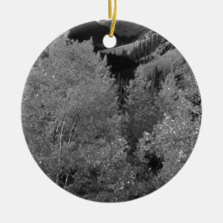 B&W Aspen 6 Christmas Ornament